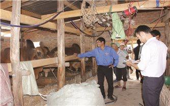 Hướng đi mới trong phát triển kinh tế ở xã vùng sâu