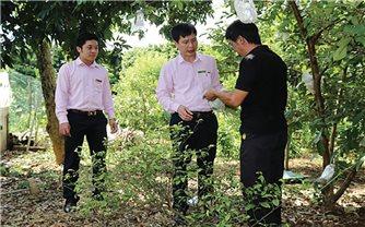 Hàng nghìn lao động tại Sơn La: Được hưởng lợi từ Quỹ quốc gia về giải quyết việc làm