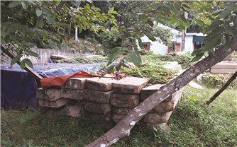 Kỳ Sơn (Nghệ An): Hàng trăm m3 gỗ thu giữ chưa có hướng giải quyết