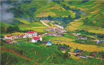 Mùa vàng ở thung lũng Măng Ri