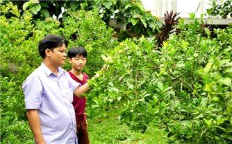Tuyên Quang: Hỗ trợ sản xuất giúp giảm nghèo hiệu quả vùng DTTS