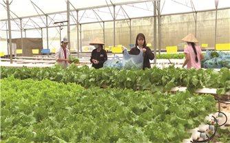 Nông nghiệp công nghệ cao ở vùng DTTS