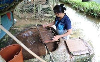 Nghề làm giấy bản trên quê hương Kim Đồng