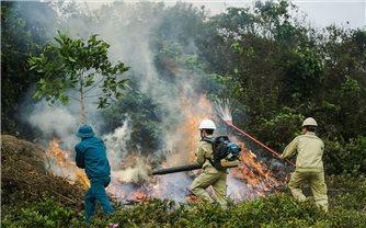 Tăng cường các biện pháp cấp bách phòng cháy, chữa cháy rừng