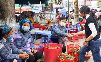 Bắc Hà (Lào Cai): Tháo gỡ khó khăn tiêu thụ mận tam hoa trong mùa dịch Covid - 19