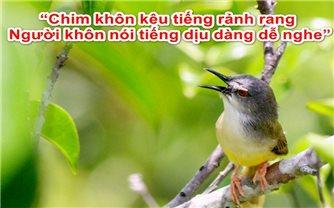 Chim khôn kêu tiếng rảnh rang