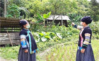 Hà Giang: Phát huy vai trò Người có uy tín trong vùng đồng bào dân tộc thiểu số ở Quyết Tiến