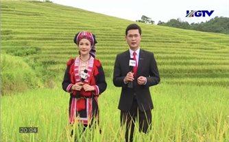 Hà Giang: Trải nghiệm văn hóa các dân tộc gắn với ruộng bậc thang qua online