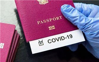 """Công nhận """"Hộ chiếu vaccine"""" giữa Việt Nam với các quốc gia là đặc biệt cần thiết"""