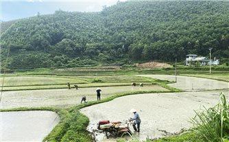 Tân Sơn (Bắc Kạn): Chuyển đổi cơ cấu kinh tế để giảm nghèo