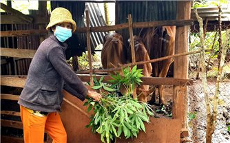 Gia Lai: Phát huy hiệu quả chính sách dân tộc