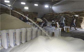 Thị trường nông sản tuần qua: Giá gạo tại các
