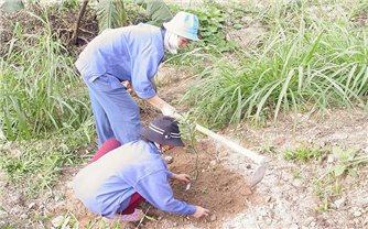 Quảng Trị: Quan tâm thực hiện tốt chính sách hỗ trợ về đất cho hộ đồng bào DTTS nghèo, hộ nghèo ở khu vực khó khăn