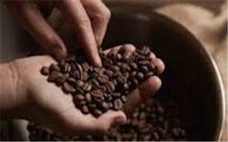 Giá cà phê hôm nay 27/10: Tăng mạnh