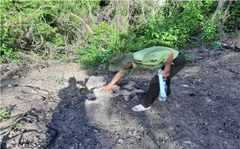 Bình Định: Điều tra, xử lý nghiêm các đối tượng phá rừng Thượng Sơn