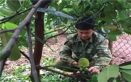 Bí thư đoàn Trần Quốc Linh làm kinh tế giỏi