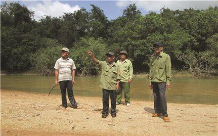 """Bình Định: Khi người dân xem """"rừng là nhà"""""""