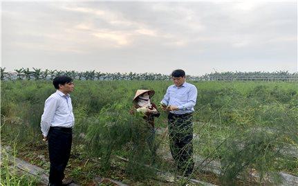 Phú Thọ: Phát huy hiệu quả Quỹ hỗ trợ phát triển HTX