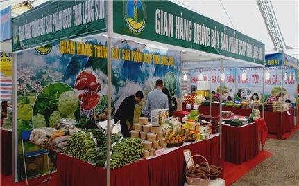 Lạng Sơn: Đánh giá, phân hạng sản phẩm OCOP đợt 1 năm 2020