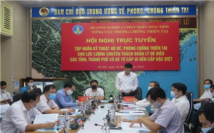 Hội nghị trực tuyến tập huấn kỹ thuật hộ đê, phòng chống thiên tai