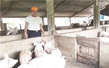 Quảng Bình: Nông dân Hà Văn Thú vượt khó làm giàu