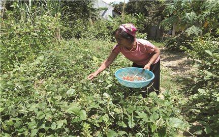 Hộ gia đình người Đan Lai đầu tiên viết đơn xin thoát nghèo