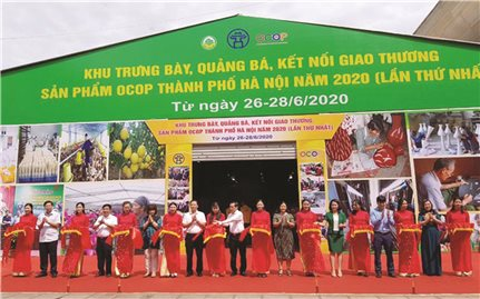 Tăng cường kết nối, giao thương: Giải pháp thúc đẩy Chương trình OCOP của Hà Nội