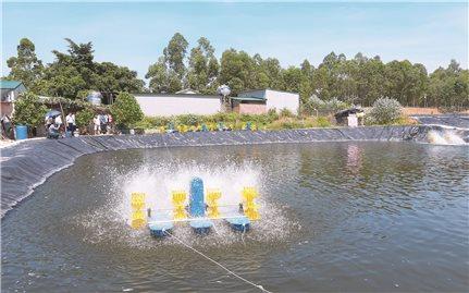 Ứng dụng công nghệ Biofloc trong nuôi trồng thủy sản: Đem lại hiệu quả kinh tế cao
