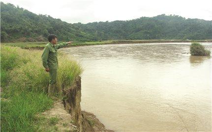 Tìm giải pháp để cứu sông Cha