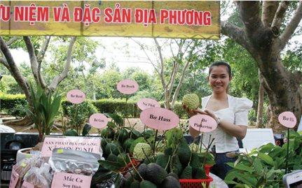 Hợp tác xã ở Phú Yên: Góp phần hiệu quả xây dựng nông thôn mới