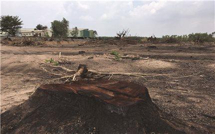 Đồng Nai - Phá rừng làm dự án khu dân cư: Sai phạm trong giao đất rừng (Bài 1)