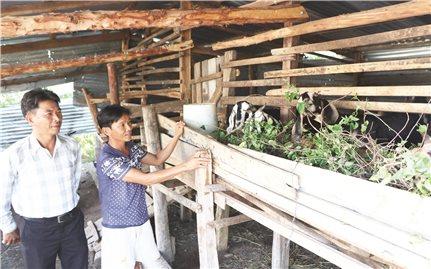 Bác Ái (Ninh Thuận): Nhiều hộ thoát nghèo từ nguồn Qũy hỗ trợ nông dân