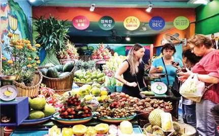 Khánh Hòa: Tiềm năng phát triển kinh tế du lịch đêm còn bỏ ngỏ