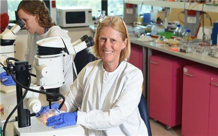 Thận nhân tạo 3D mang đến hy vọng cho bệnh nhân ghép tạng