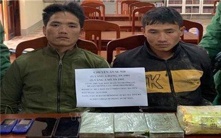 Bắt giữ hai đối tượng mua bán trái phép chất ma túy