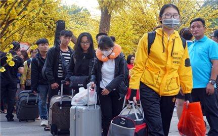 Hỗ trợ 3.000 vé xe cho sinh viên về quê đón Tết