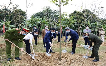 Nhiều địa phương tổ chức Tết trồng cây Xuân Tân Sửu