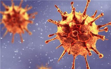 """Phát hiện biến chủng mới của virus SARS-CoV-2 có thể làm """"vô hiệu hóa"""" xét nghiệm PCR"""