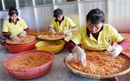 Trà Vinh hỗ trợ phát triển sản xuất 100 sản phẩm OCOP