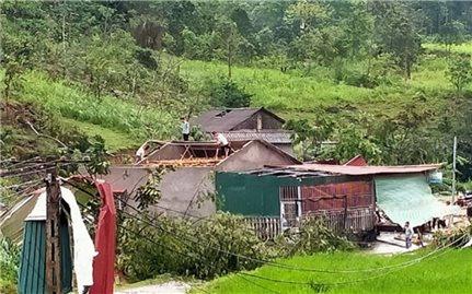 Lào Cai: Dông lốc gây thiệt hại về nhà ở và sản xuất nông nghiệp