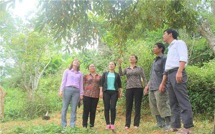 Bắc Hà (Lào Cai): Khi vai trò Người có uy tín được phát huy