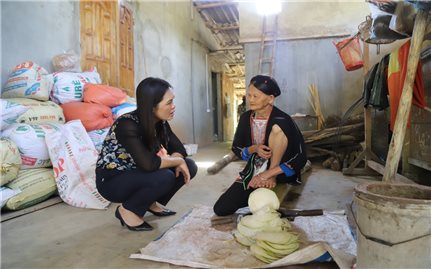 Ban Dân tộc tỉnh Tuyên Quang: Triển khai thực hiện hiệu quả công tác dân tộc trong bối cảnh đại dịch