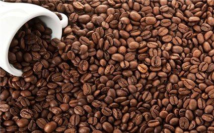 Giá cà phê hôm nay 29/7: Thị trường trong nước tăng nhẹ