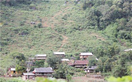 Tệ nạn ma túy trong vùng DTTS và miền núi vẫn diễn biến phức tạp