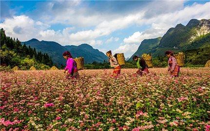 Hà Giang - Những sắc màu rực rỡ