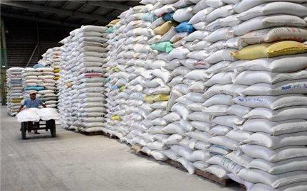 Hỗ trợ gạo cho học sinh vùng khó Gia Lai