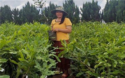 Lâm Đồng: Nữ Chủ tịch Hội Nông dân kéo cả xã cùng làm giàu