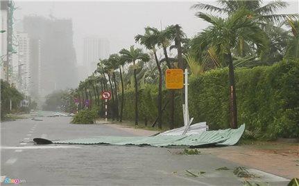 Hoa Kỳ, Hàn Quốc hỗ trợ Việt Nam khắc phục hậu quả bão lụt