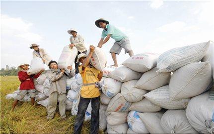 Chính sách chi trả dịch vụ môi trường rừng ở Kon Tum: Hiệu quả kép