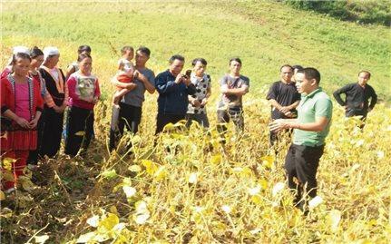 Hiệu quả từ Chương trình vì người nghèo ở Điện Biên